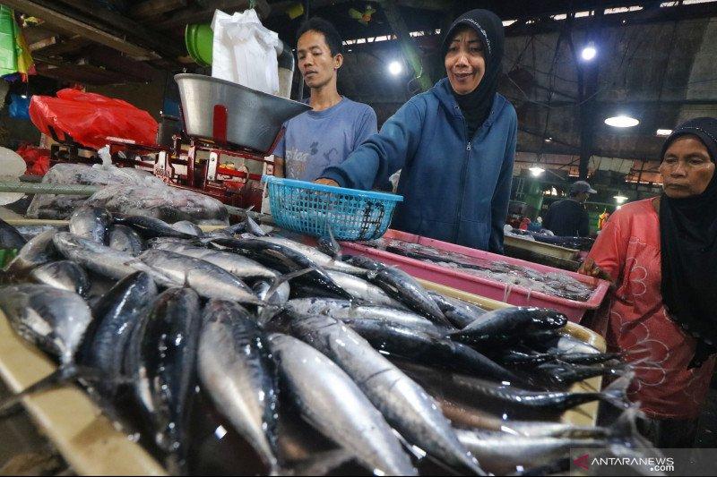Menkop UKM ingatkan konsumsi ikan tumbuh paling pesat secara global