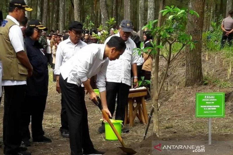 Presiden minta WNI diterima setelah observasi di Natuna
