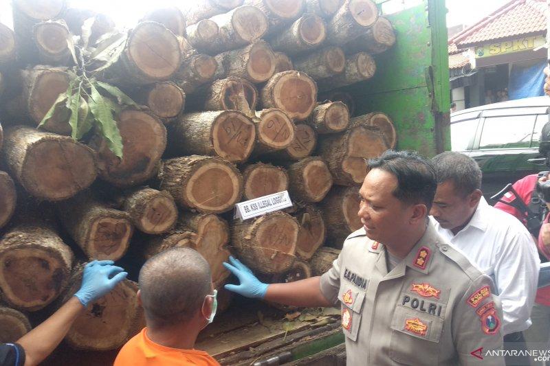 Polisi tangkap penadah kayu jati hasil pembalakan hutan Perhutani