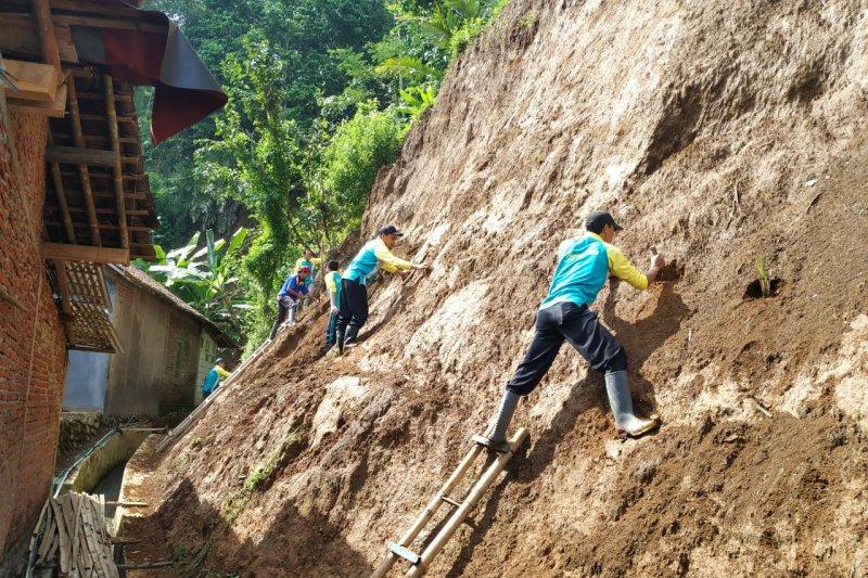 BPBD Banjarnegara tanam vetiver di lokasi rawan longsor