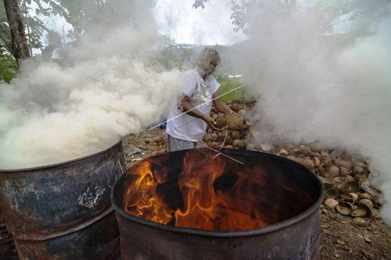 Pembuatan Arang Terpurung Kelapa