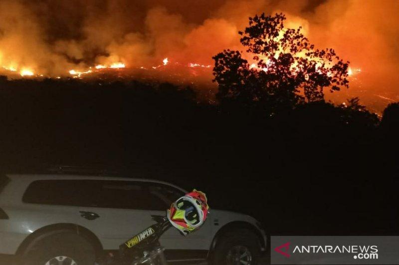 Kebakaran lahan 6 hektare di Salakan, Kabupaten Banggai Kepulauan