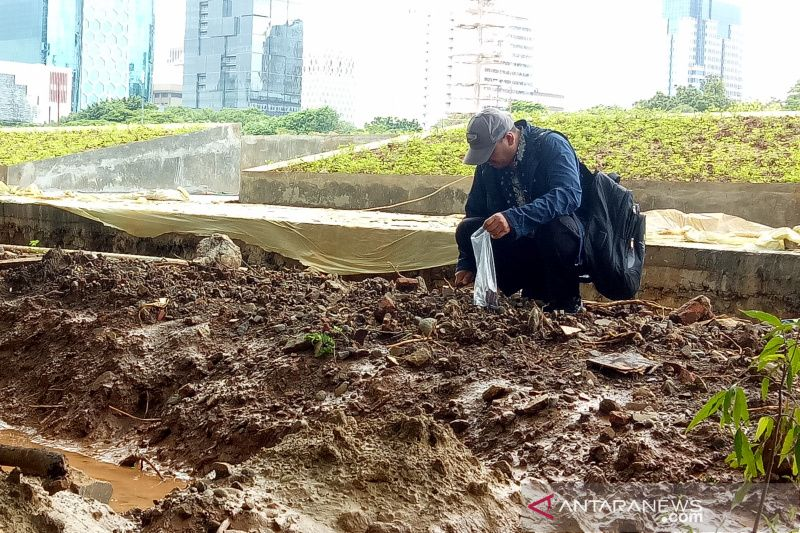 Komisi Pengarah ambil sampel pohon Revitalisasi Monas