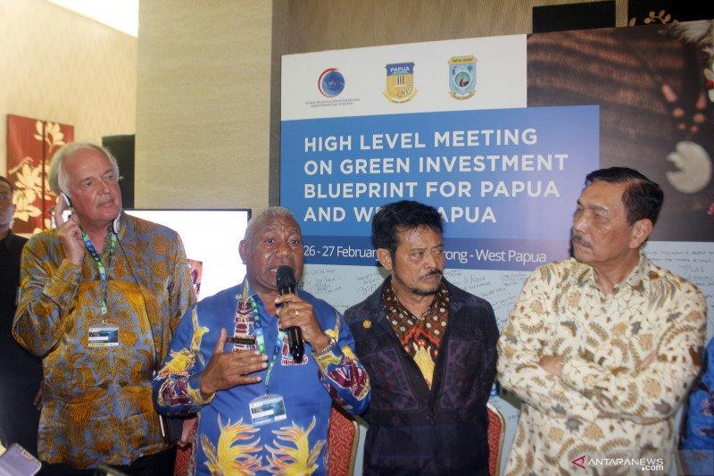Pemerintah luncurkan konsep investasi hijau untuk Papua-Papua Barat
