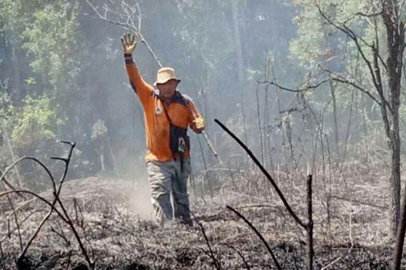 Kebakaran lahan di Barito Selatan sudah enam kali