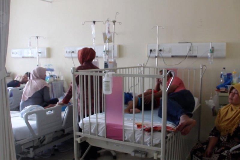 Waspada DBD, sebanyak 49 penderita meninggal dunia