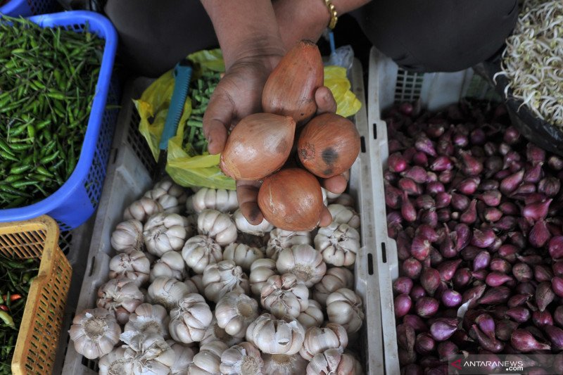 Satgas Pangan: 700 ton bawang bombai impor sudah tiba di Indonesia