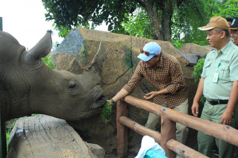 Antisipasi COVID-19, Taman Safari Indonesia lakukan langkah preventif