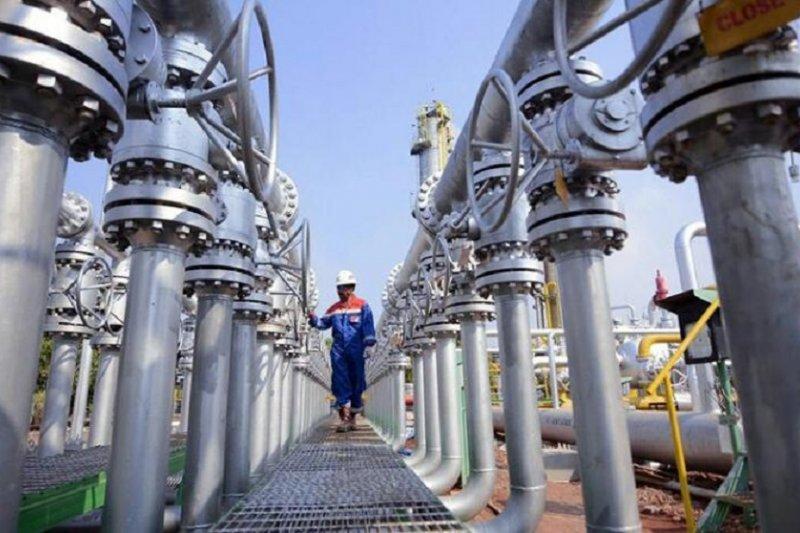 PGN komitmen selesaikan pipa minyak Rokan sesuai target