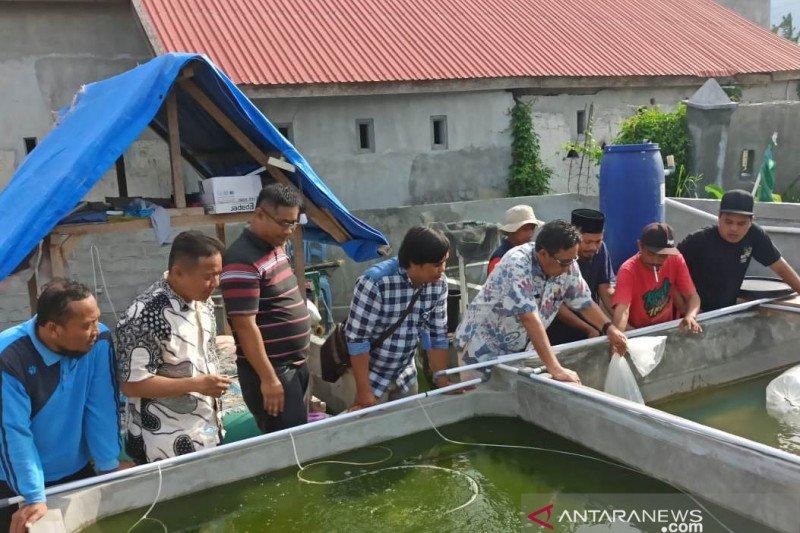 Kadis Kelautan dan Perikanan Provinsi Sulawesi Tengah Moh Arif Latjuba menebar benih ikan nila di kolam pembesaran Lepbuk Ansor di Kota Palu, Jumat (20/3). Penebaran disaksikan Kepala Seksi Perikanan Budidaya DKP Sulteng Budiyanto Somba, beberapa staf bid
