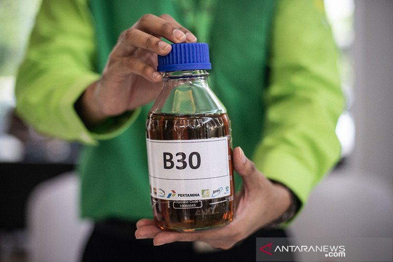 Kajian: Program Biodisel B30 jaga harga CPO dan kesejahteraan petani