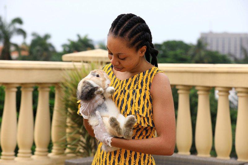 Kelinci jadi hiburan orang Nigeria saat karantina wilayah