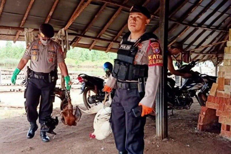 Polisi gerebek judi sabung ayam di Sampit saat pandemi COVID-19