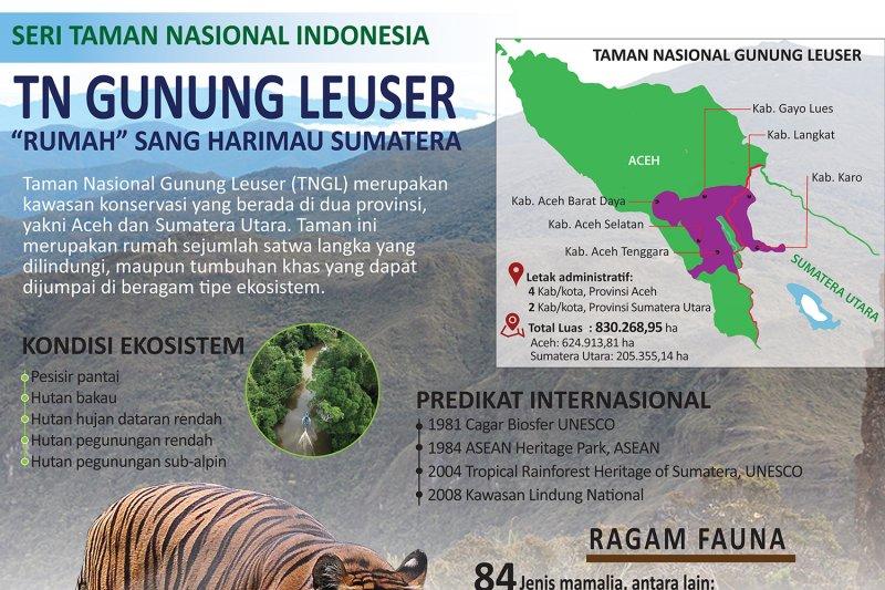 TN Gunung Leuser, 'rumah' sang harimau sumatera