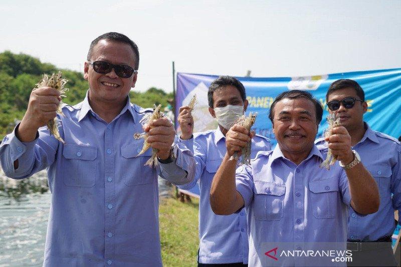 Menteri Edhy kunjungi AS guna perkuat budidaya udang Indonesia