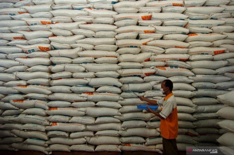 Bulog: Pandemi COVID-19 sebabkan harga beras tinggi meski panen raya