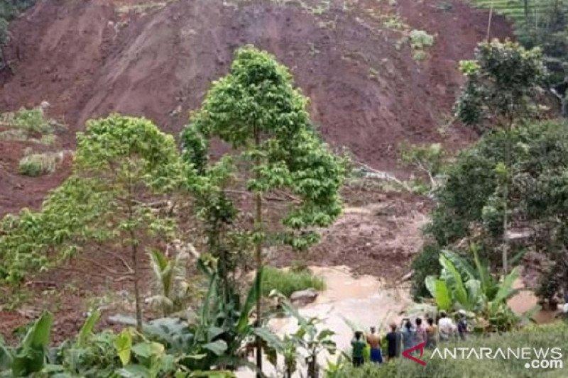 Tiga hektare lahan pertanian di Sukabumi gagal panen akibat longsor