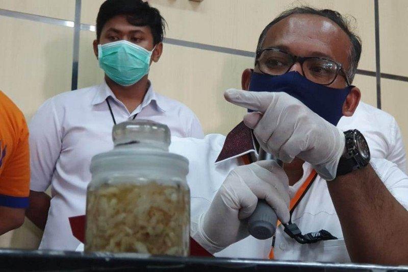 Polda Jatim gagalkan penyelundupan benih lobster senilai Rp4,2 miliar