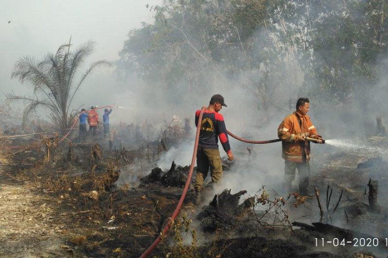 TMC basahi lahan gambut antisipasi puncak musim kemarau cegah karhutla