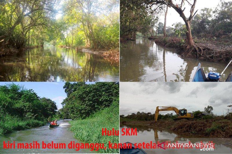 Pemerhati sungai tanam pohon kanopi yang dibabat kontraktor