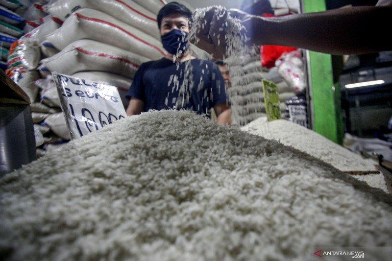 Harga beras di lokasi tambang emas Papua capai Rp2 juta/karung