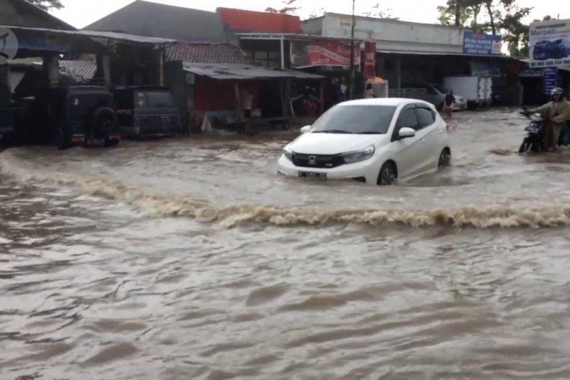 Banjir rendam puluhan rumah warga di Jember