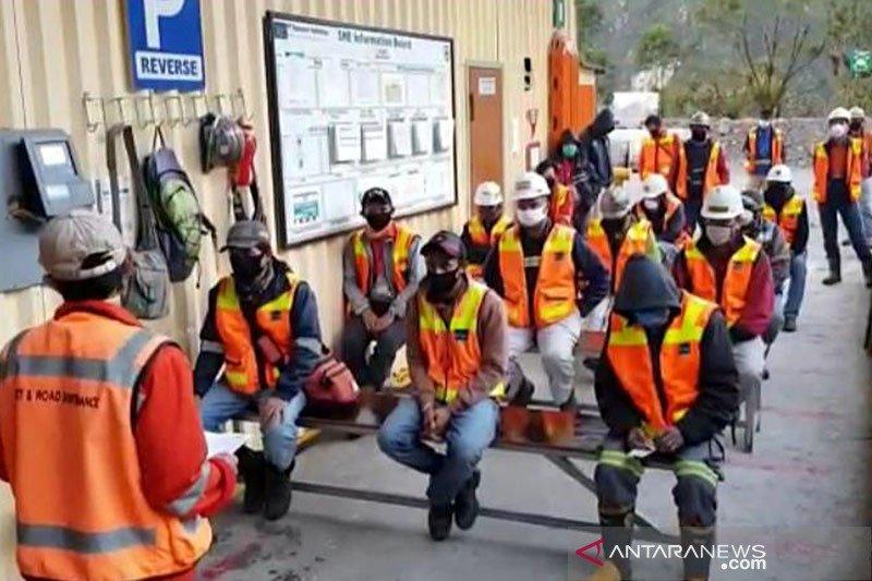 Pekerja kena Corona naik, Presiden diminta tutup sementara Freeport