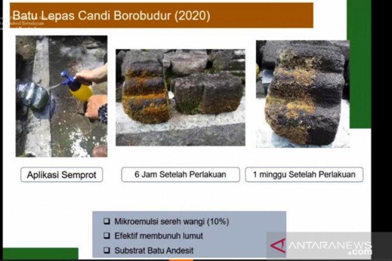 BKB terapkan mikroemulsi minyak sereh untuk konservasi cagar budaya
