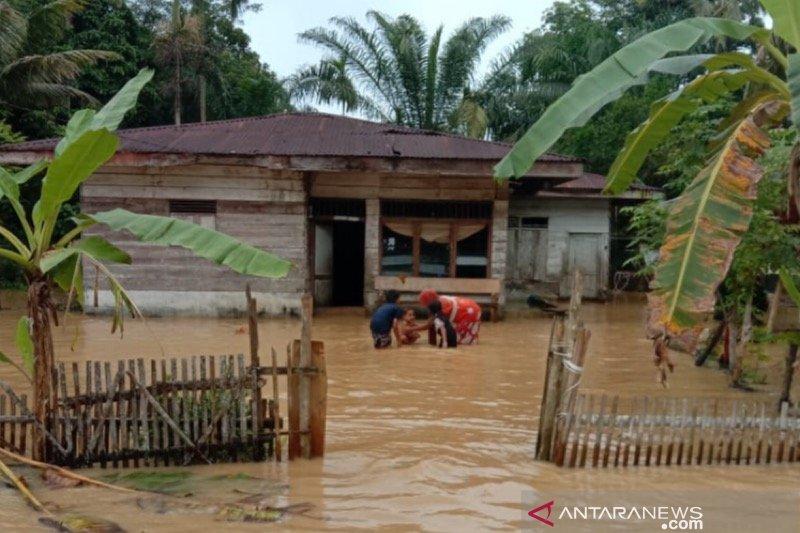 143 warga mengungsi akibat luapan banjir di Aceh Timur