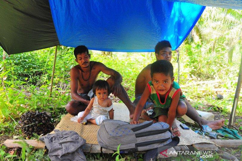 Orang Rimba Jambi terdampak pandemi COVID-19