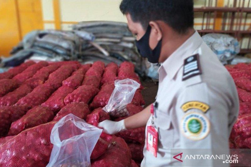 Kementan tahan 36 ton bawang merah impor ilegal asal Malaysia