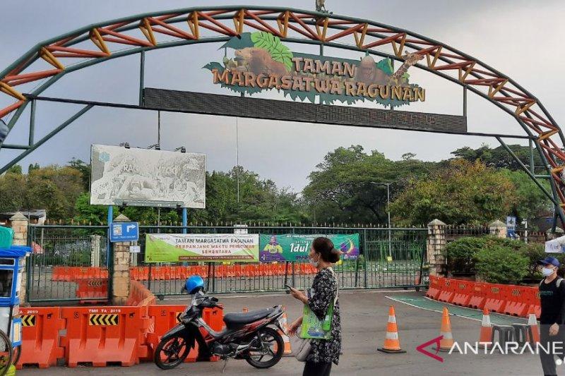 Taman Margasatwa Ragunan akan batasi pengunjung 5.000 orang per hari