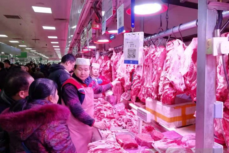 Anjing tidak termasuk larangan perdagangan 33 jenis binatang di China