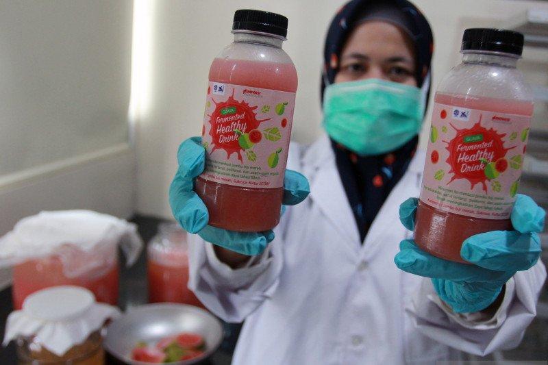 LIPI ciptakan minuman jambu biji peningkat imun tubuh
