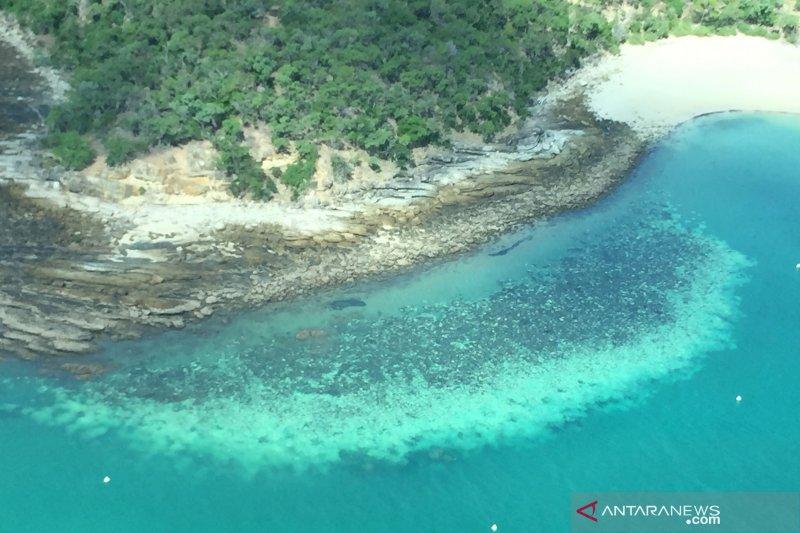 PBB usul Great Barrier Reef Australia masuk daftar 'dalam bahaya'