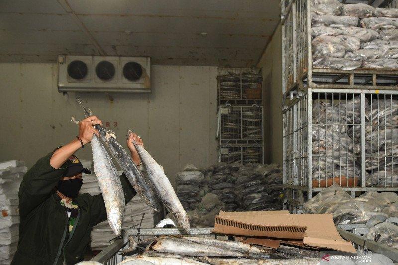 Badan Karantina Ikan perlu sidak antisipasi kasus ekspor China