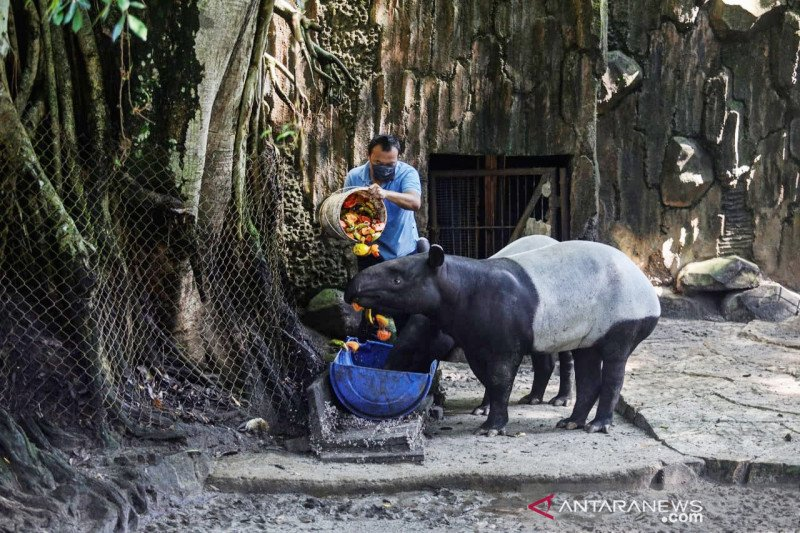 Pemkot Bandung nilai sejumlah objek wisata belum siap beroperasi