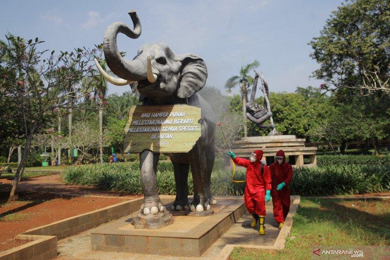 Penyemprotan disinfektan di Taman Margasatwa Ragunan