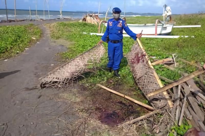 BPSPL Denpasar tangani paus terdampar mati di Pantai Lembeng-Bali