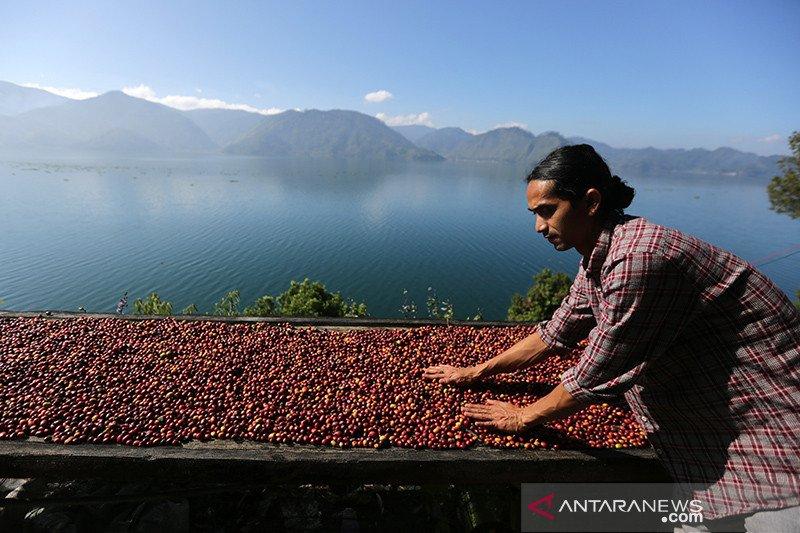 Tingkatkan wisatawan, Aceh gelar Festival Kopi Kutaraja
