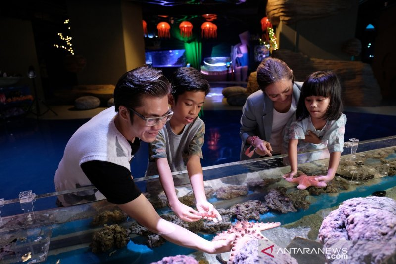 Jakarta Aquarium tawarkan alternatif wisata aman saat pandemi COVID-19