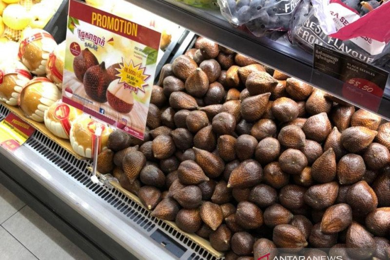 Salak Indonesia kembali masuk  pasar Kamboja usai terhambat COVID-19