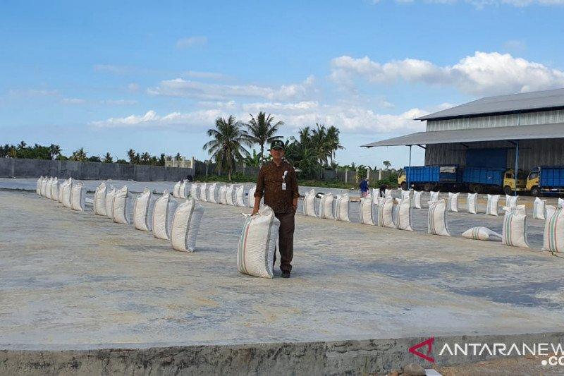 Bulog tunggu persetujuan Kementerian BUMN terkait investasi di Sumbawa