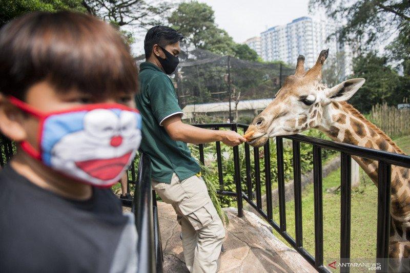 Kebun binatang Bandung dibuka kembali