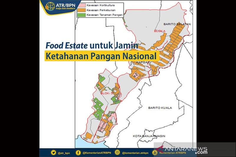 """Menjawab ancaman krisis pangan lewat """"food estate"""" di lahan rawa"""
