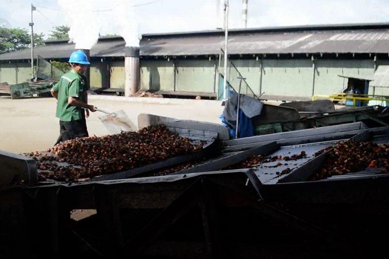 Ekonomi Riau tumbuh di atas 2%, ini penyebabnya