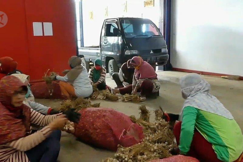 Pemkab Temanggung dorong importir beli bawang putih petani