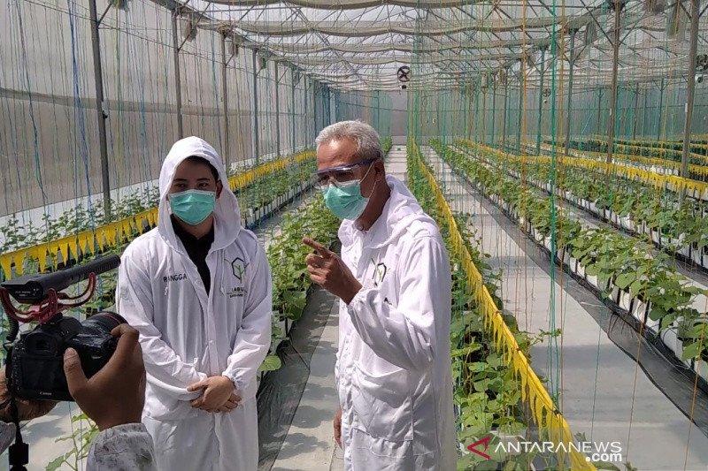 Ganjar dorong pemanfaatan teknologi modern di bidang pertanian