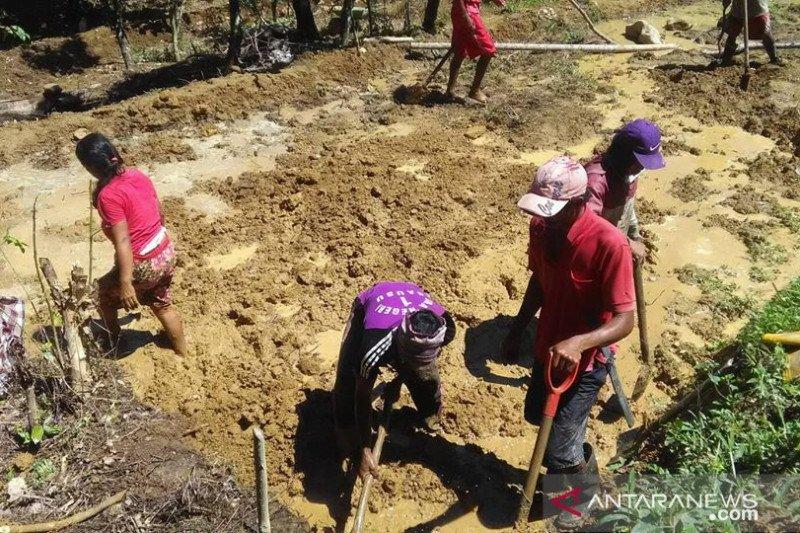 Kemendagri dorong kerja sama daerah wujudkan ketahanan pangan