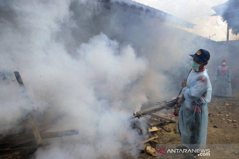 Sebanyak 22 orang meninggal akibat DBD di Lampung